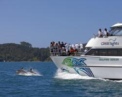 Fullers GreatSights - Dolphin Seeker