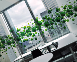 deloitte-window-graphics