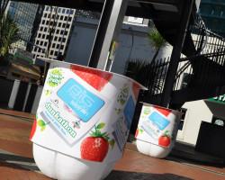 Fresh n Fruity Dunkathon