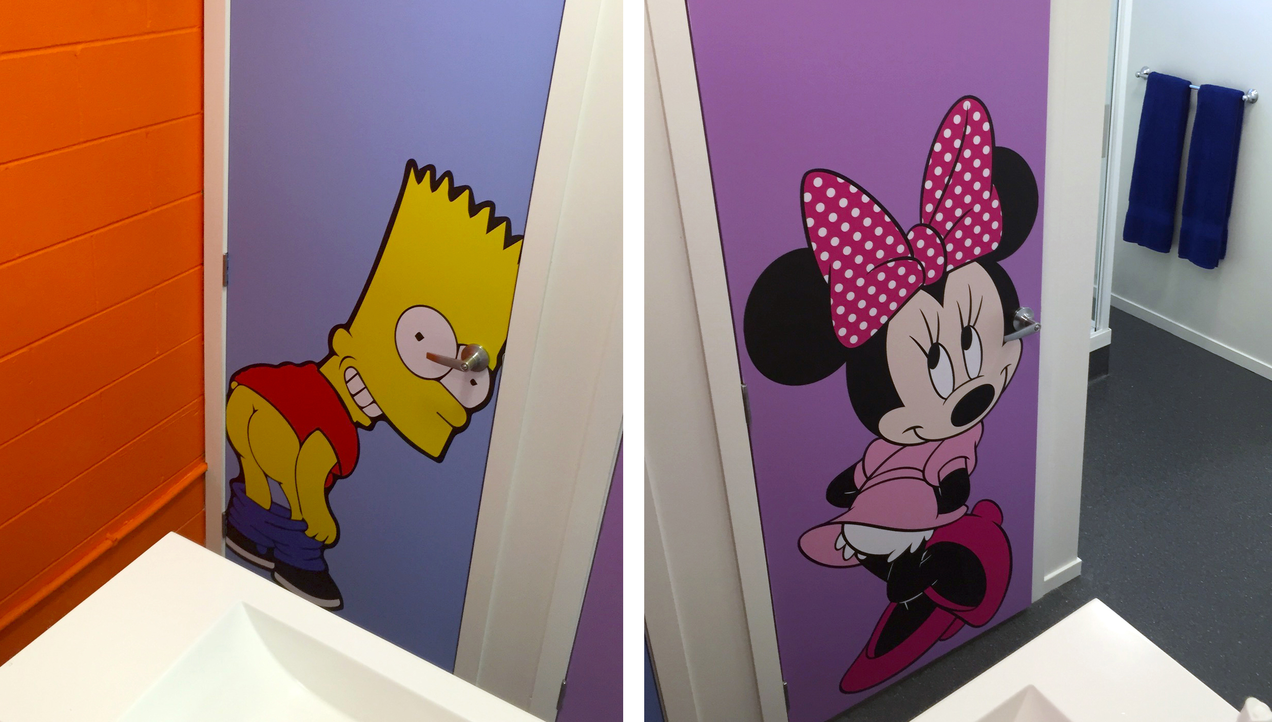 Decorative Dunnies: Toilet Signs graphic